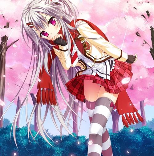 二次 エロ 萌え フェチ 銀髪・白髪 髪型 灰色 二次エロ画像 ginpatsuhakuhatsu2015030402