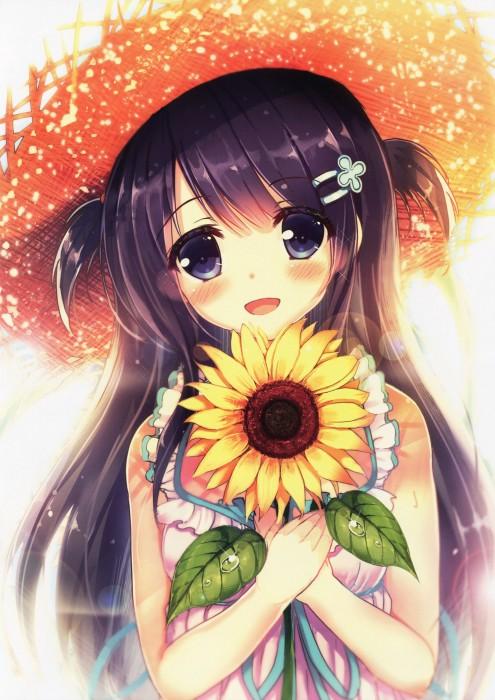 二次 非エロ 萌え フェチ 向日葵 花 夏 季節 美少女風景 二次非エロ画像 himawari2015080738